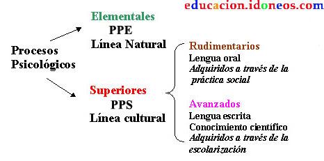 Funciones psicologicas superiores y elementales